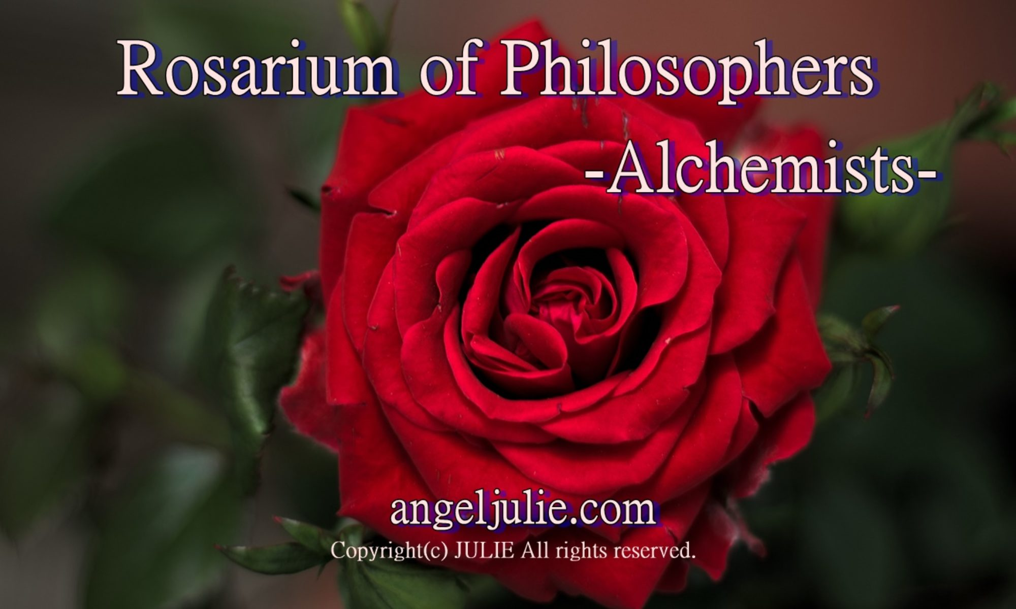 Rosarium of Philosophers -Alchemists - by Angel Julie | The Book of Angels